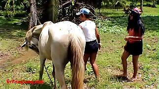 Real party amateur teens heather deep and girlfriend LOVE HORSE COCK